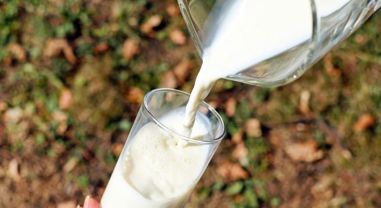 Camel Milk Freshly Poured into Glass