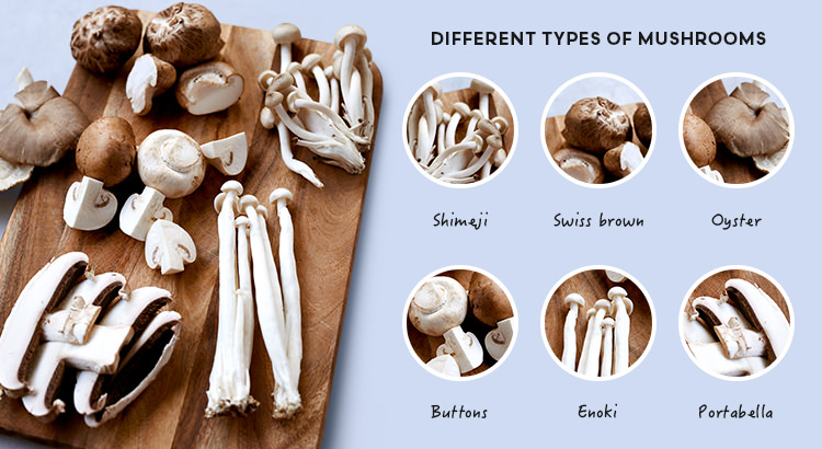 Different types of mushrooms
