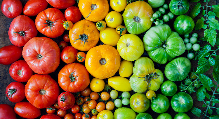 Heirloom vegetables - tomatoes