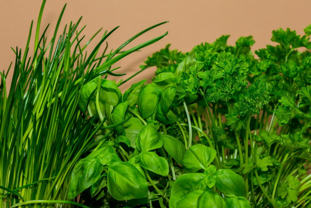 How to avoid wasting fresh herbs
