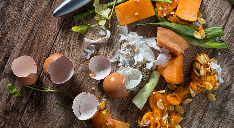 Recycling Food scraps into Compost