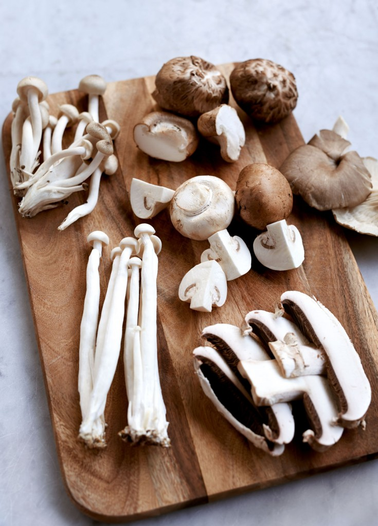 Variety of fresh mushroom: white brown beech, button, shiitake, grey oyster, and portobello.