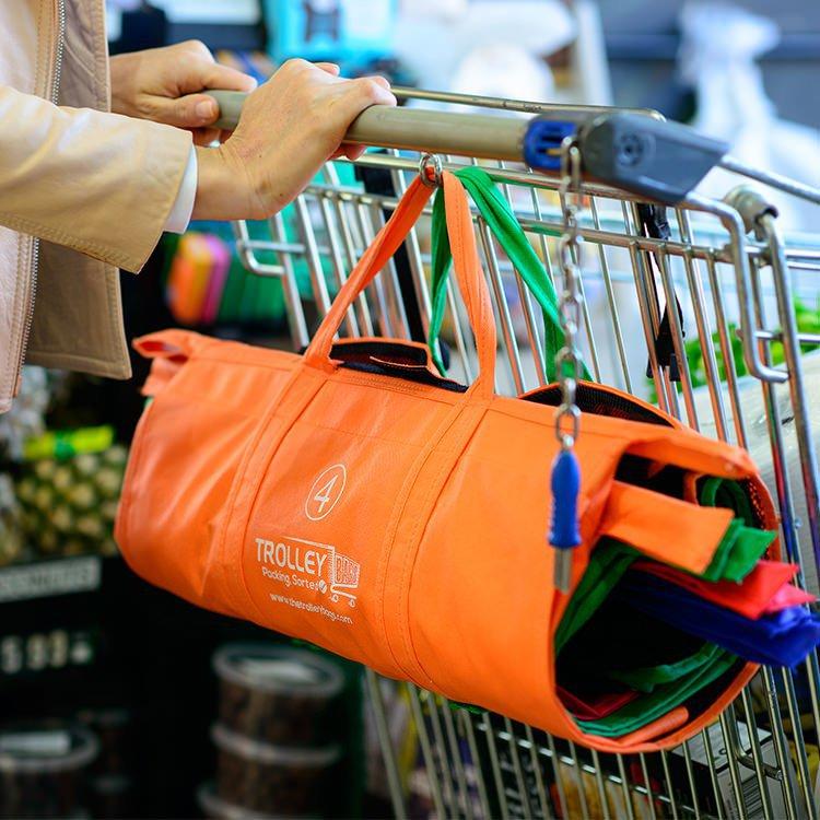 Zero Waste_Reusable Bag